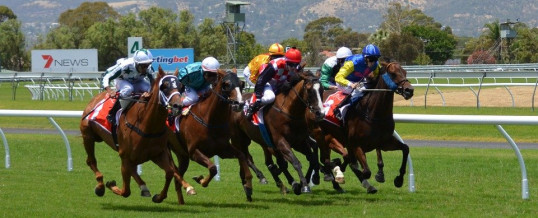 Top Horse Racing Tips Search Terms